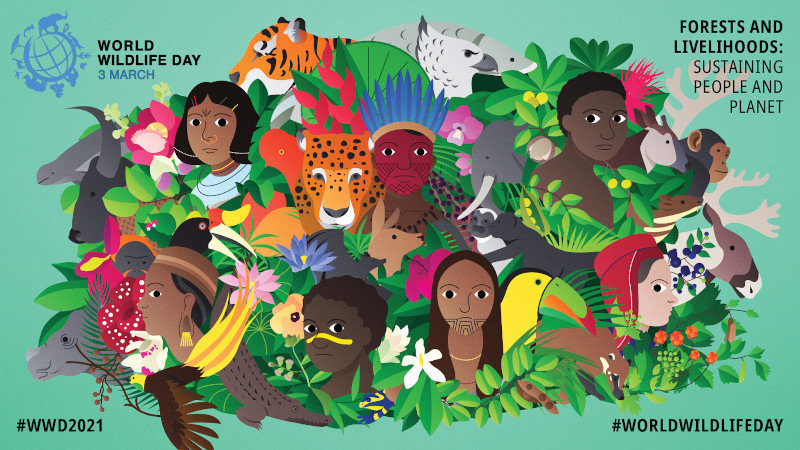 World Wildlife Day 2021 poster by Gabe Wong - Illustration of Indigenous people, plants, and animals from different cultures